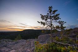 Skuleskogen-TL6-0002.jpg